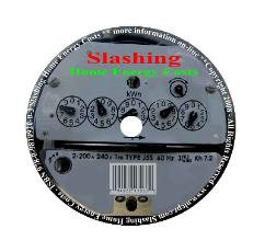 Slashing Home Energy Costs DVD